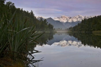 Lake Matheson reflecting Mt. Cook