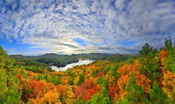 Lake Luzerne & oaks treetop 270x120