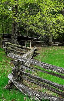 Old farm fencing along Alder Pond Rd, Schroon Lake region