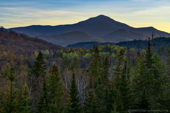 Whiteface Mt rising above green springtime birch and spruce forests