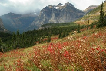 Autumn in Glacier National Park, MT