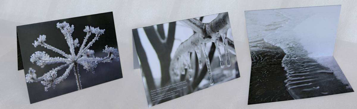 icy intracacies,notecard,macro,photo, photo