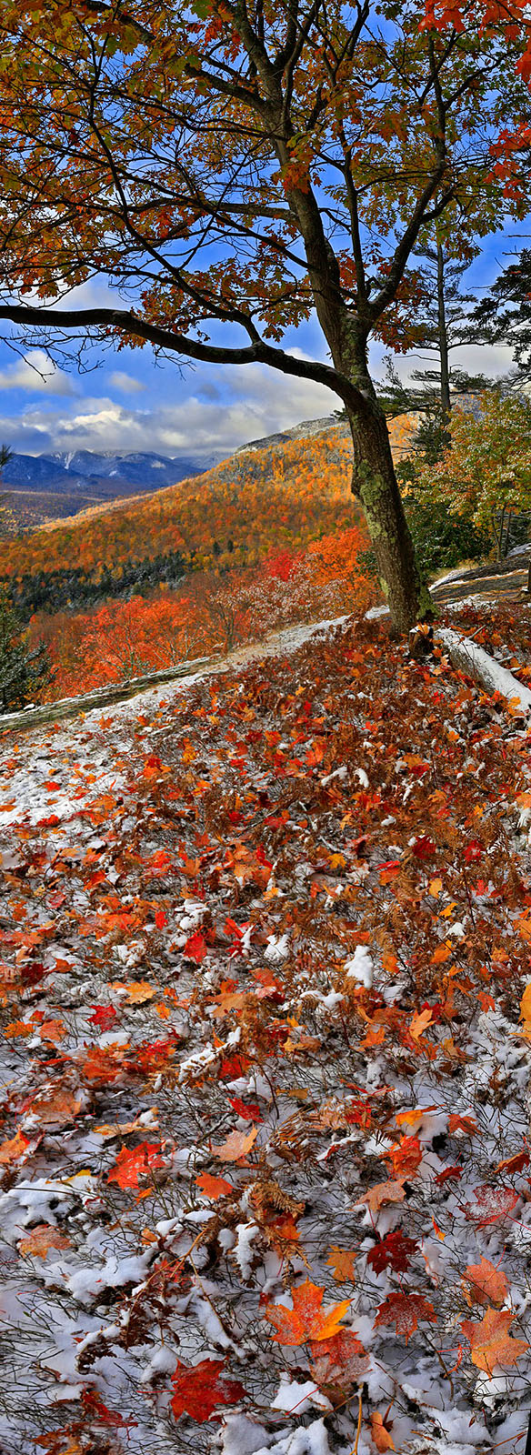 Adriens Acres,vertical panorama,snow,autumn snowfall,snowfall,autumn,dusting,October,Johns Brook Valley, photo