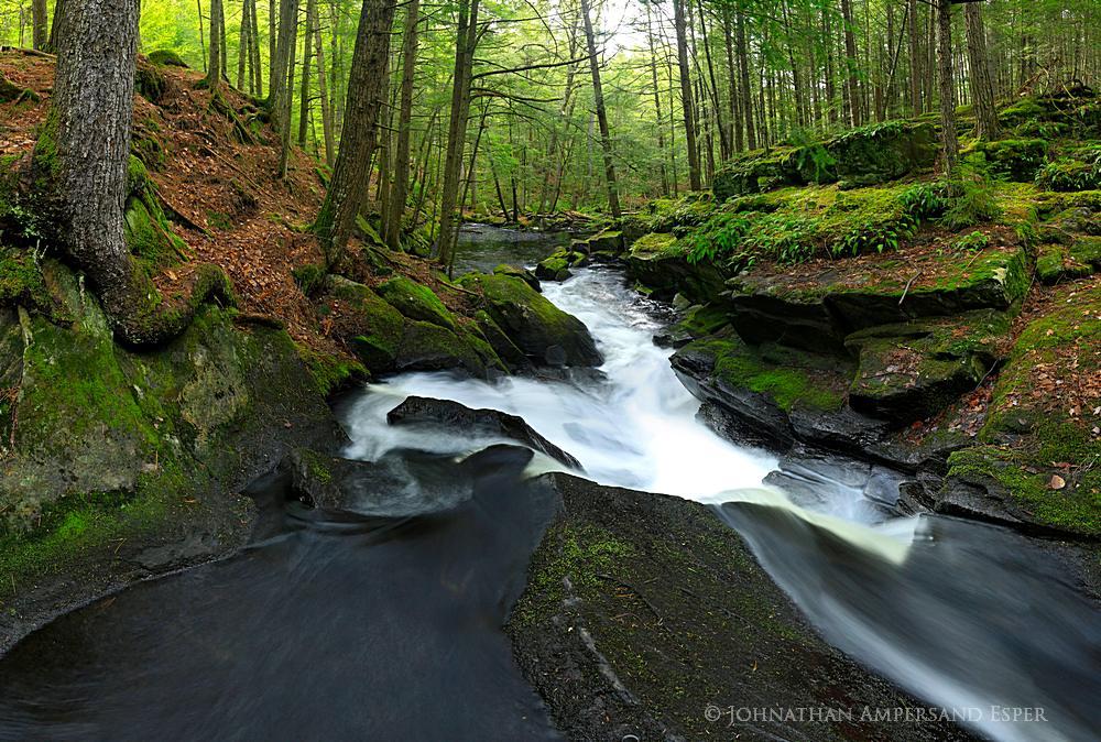 Alder Pond outlet, Pharoah Wilderness,Alder Pond,gorge,spring,springtime,stream,spring stream,2013, photo