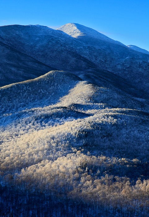 frosted,frosty,frost,forest,winter,blue,white,Algonquin,treetop,Mt Jo,slope,Adirondack,layers,vertical,Algonquin Peak,Wr, photo