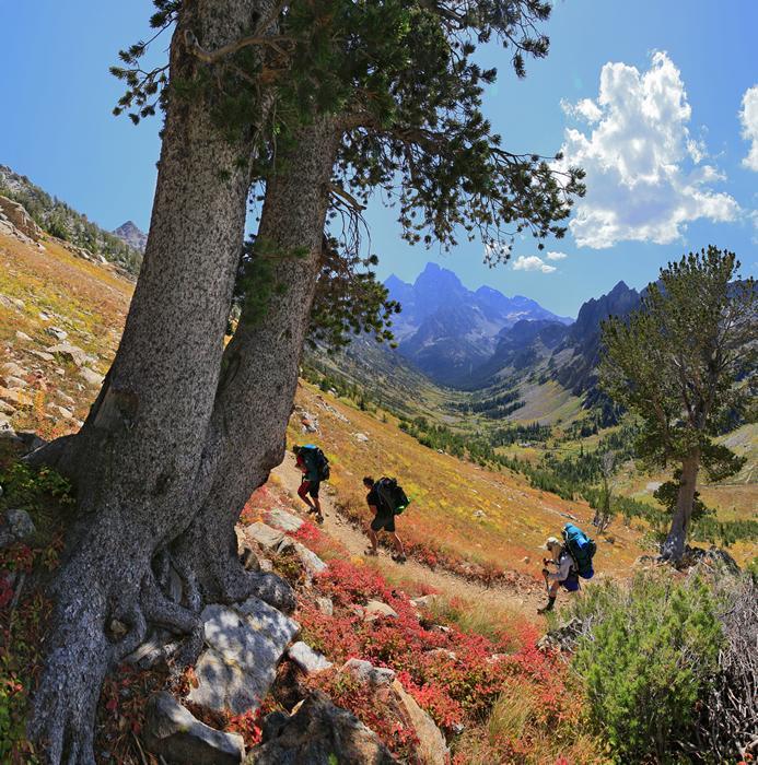 Grand Teton National Park,Grand Teton,hikers,hiking,backpackers,backpacking,three,3,group,trail,glaciated,valley,u-shape, photo