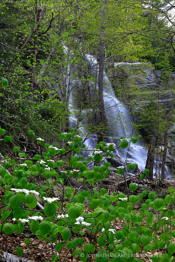 Beaver Meadow Falls,Ausable Valley,Ausable Club,spring,, photo