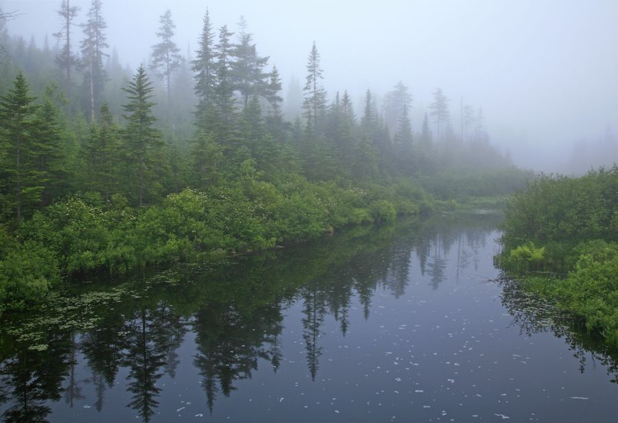 Big Brook, stream, Adirondack, Adirondack Park, water, foggy, atmospheric, Long Lake, morning, photo