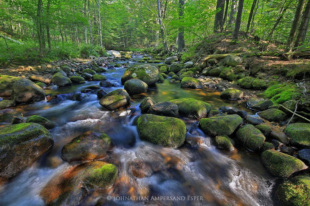 Black Brook,Black Brook township,Black Brook town,stream,forest,Newberry Pond outlet,Black Brook stream,Newberry Pond,Adirondack,, photo