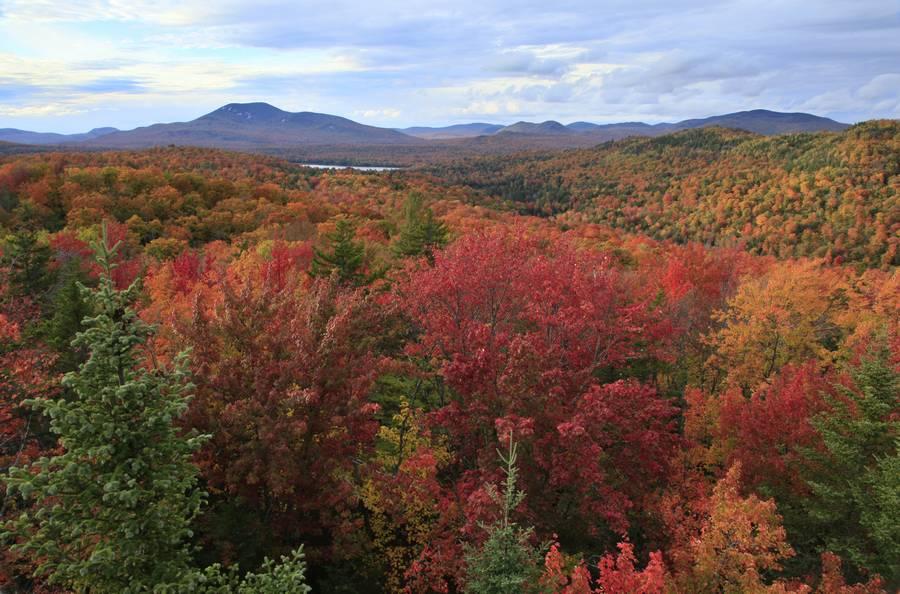 Ledger Mt,Ledger Mountain,Indian Lake,Blue Mountain,Adirondack Park,Adirondacks,fall,autumn,foliage,l, photo
