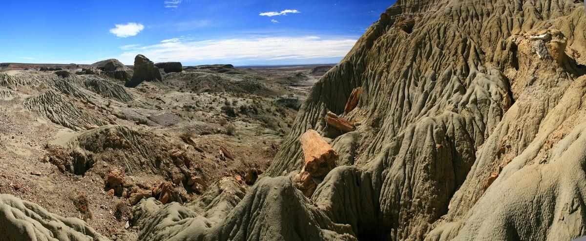 Bosque Petrificado, Reserva Natural, petrified forest, Patagonia, Sarmiento, petrified wood, petrified log, erosion, photo
