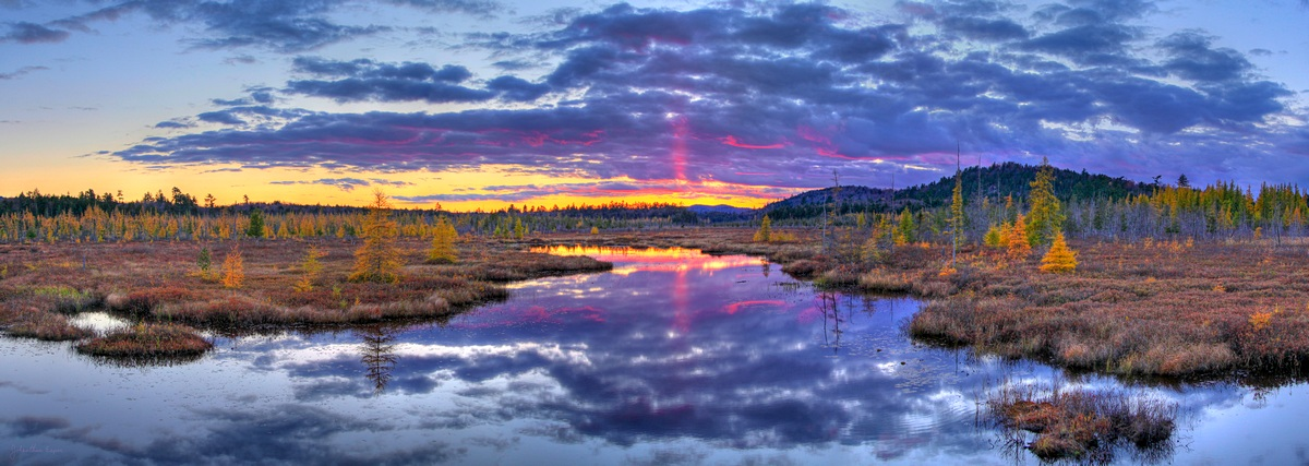Browns Tract Inlet,Raquette Lake,yellow,tamarack,trees,November,sunset,HDR,