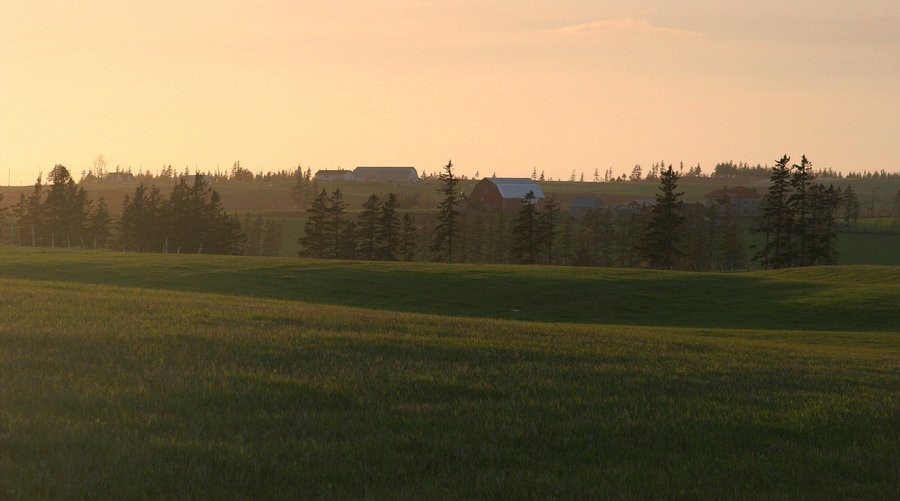 Prince Edward Island, farm, landscape, farms, pastures, field, photo