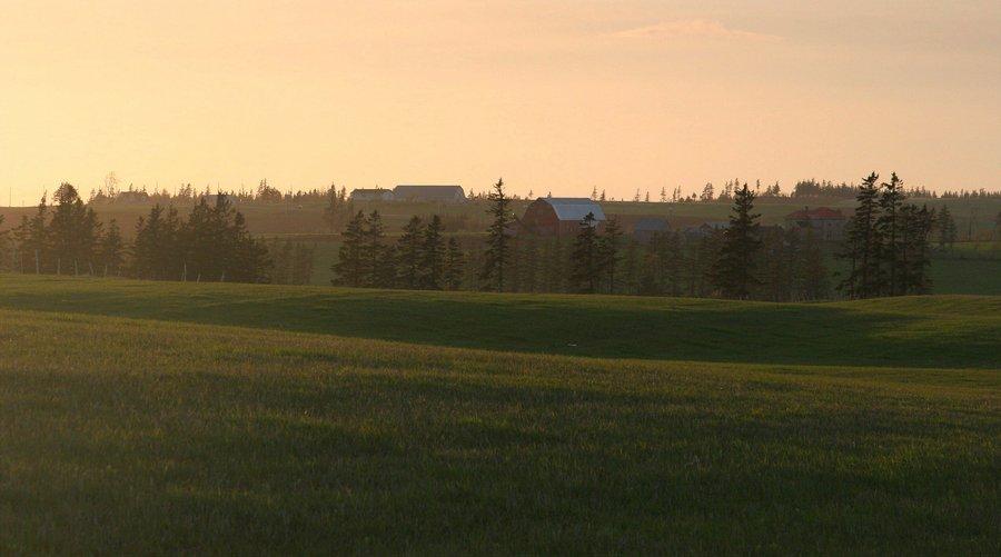Prince Edward Island, farm, landscape, farms, pastures, field, photo