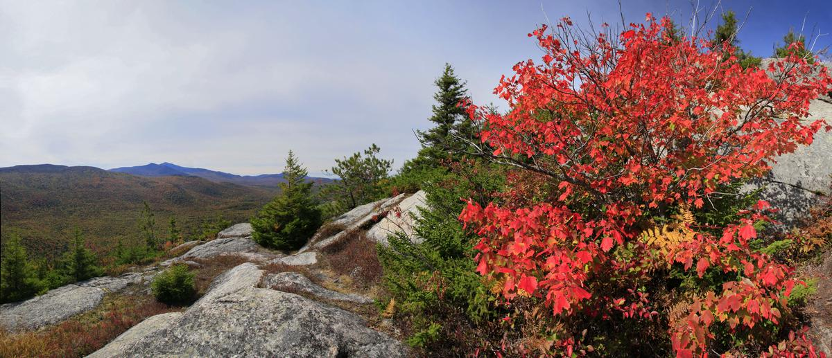 Catamount Mt,Whiteface Mt,Catamount,Whiteface,fall,summit,, photo