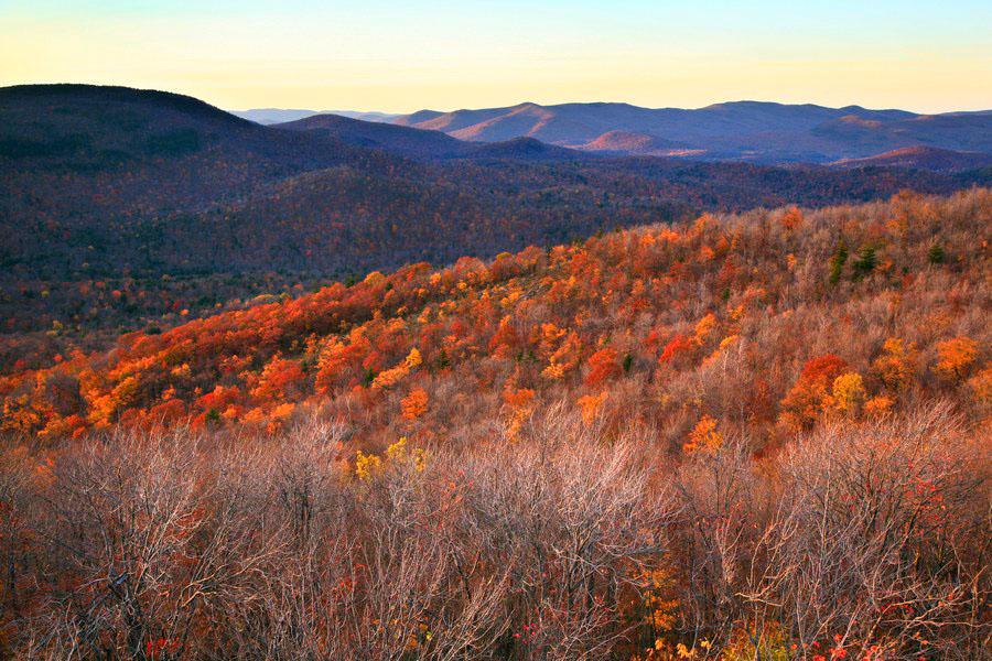 Cathead Mt,firetower,autumn,fall,late,, photo