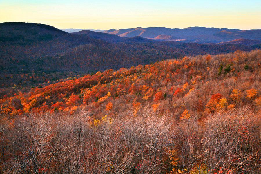 Cathead Mt,firetower,autumn,fall,late,, photo