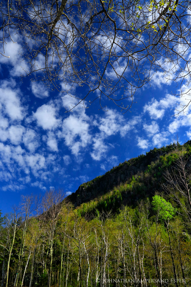 Chapel Pond,Giant Mt,Giant Mt cliffs,spring,spring greenery,leafbuds,puffy clouds,2014,springtime,vertical,, photo