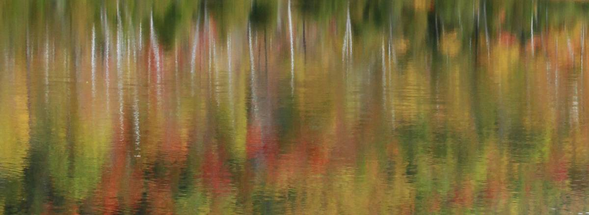 Chapel Pond,abstract,motion,blur,background,forest,birches,reflected,reflection,Adirondack Park,lake,, photo