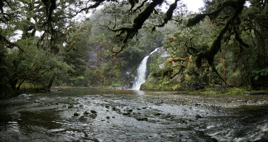 Fiordland National Park, waterfall, wilderness, Dusky Track, Henry Burn, stream, rainforest, Seaforth River valley,, photo