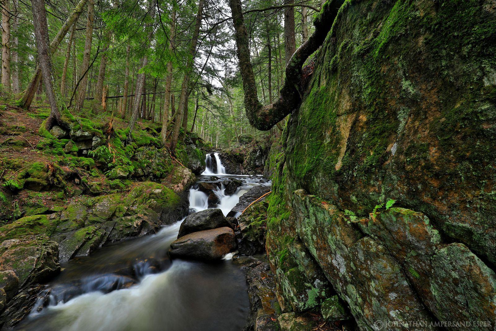 East Jimmy Creek,East Jimmy Creek Falls,spring,2019