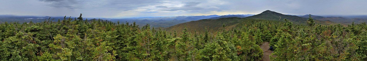 Esther Mt,Whiteface Mt,treetop,panorama