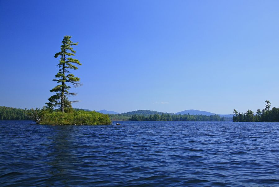 Forked Lake,island,lake,Adirondack,Adirondack Park,white pine,lone,tall,Owls Head Mt,water,level,from,kayak,shoreline, photo
