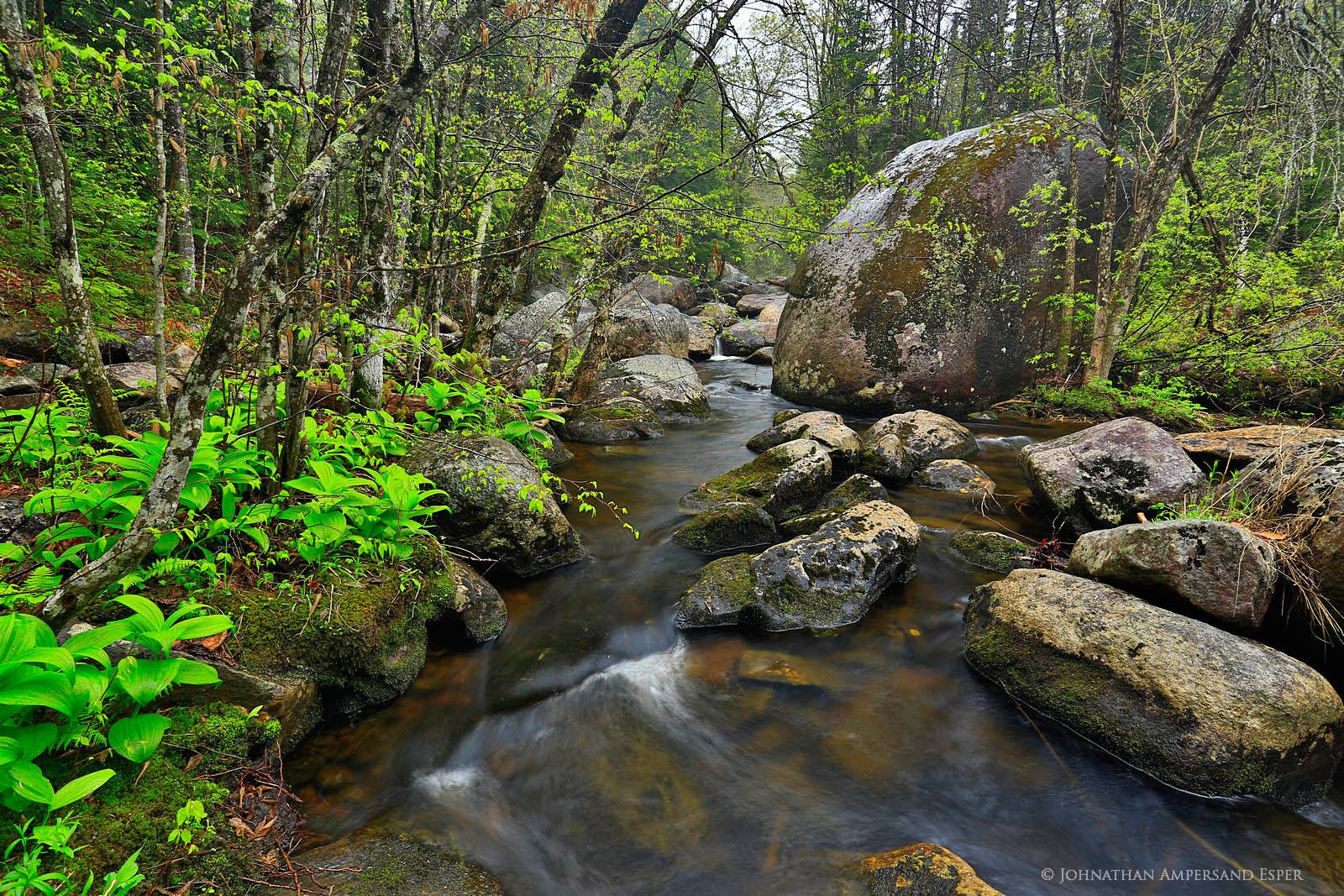 Georgia Brook,Sacandaga River,East Branch,tributary,river,stream,rainy,April,spring,wet,brook,Adirondack,Adirondack Park,, photo