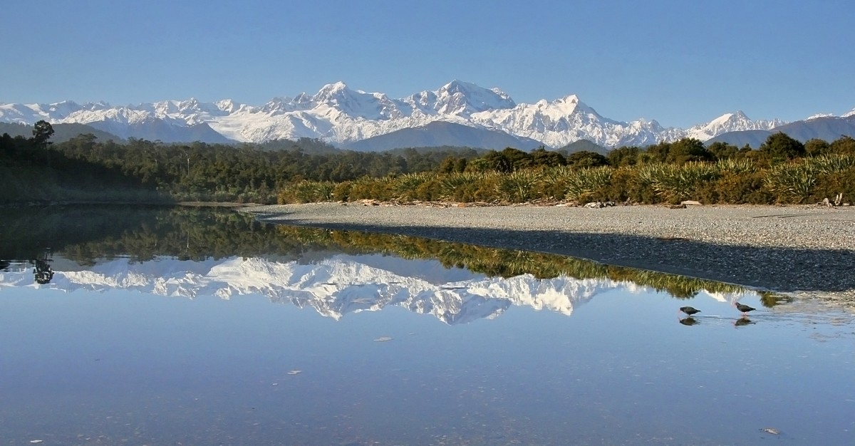 Gillespies Lagoon,oystercatcher,birds,wading,reflection,Mt. Cook, Mt. Tasman, West Coast, New Zealand, photo