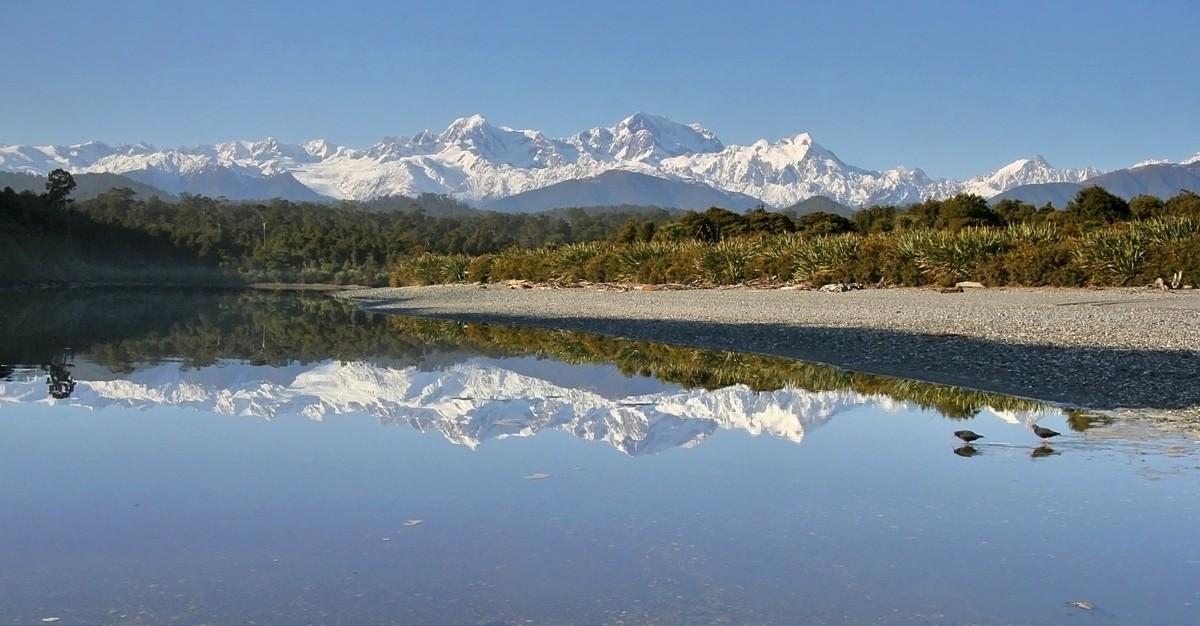 Gillespies Lagoon,oystercatcher,birds,wading,reflection,Mt. Cook, Mt. Tasman, West Coast, New Zealand, photo