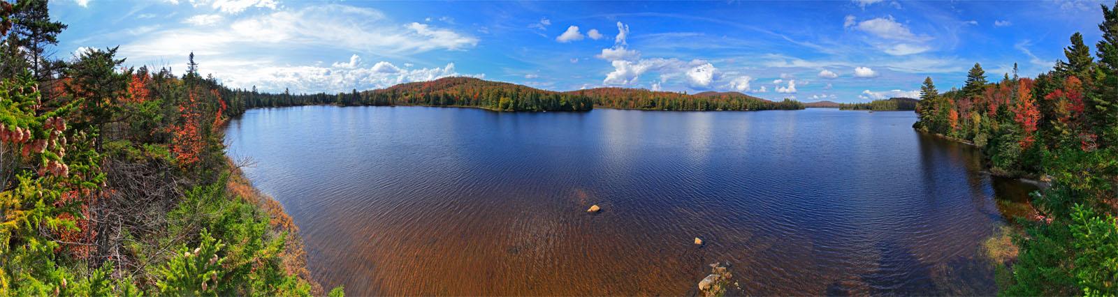 Grampus Lake,treetop,panorama