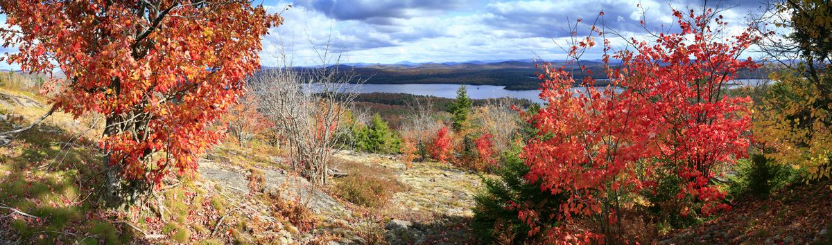 Lows Lake, Grass Mountain, Grass Mt, Whitney Wilderness Area, Adirondacks, Adirondack, autumn, leaves, foliage, red, col, photo