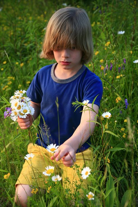 little,boy,pick,picking,wildflowers,flowers,mother,smiling,innocent,daisies,Adirondack Park,child,field,grass,sitting,ex, photo