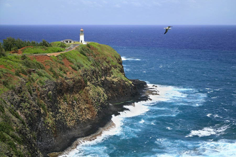 Kilauea Lighthouse, lighthouse, Hawaii, Kauai, photo