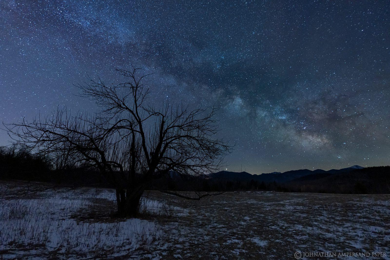Heaven Hill Farm,Heaven Hill Farm trails,orchard,field,apple tree,Milky Way,night sky,stars,night,April,2020,trails,