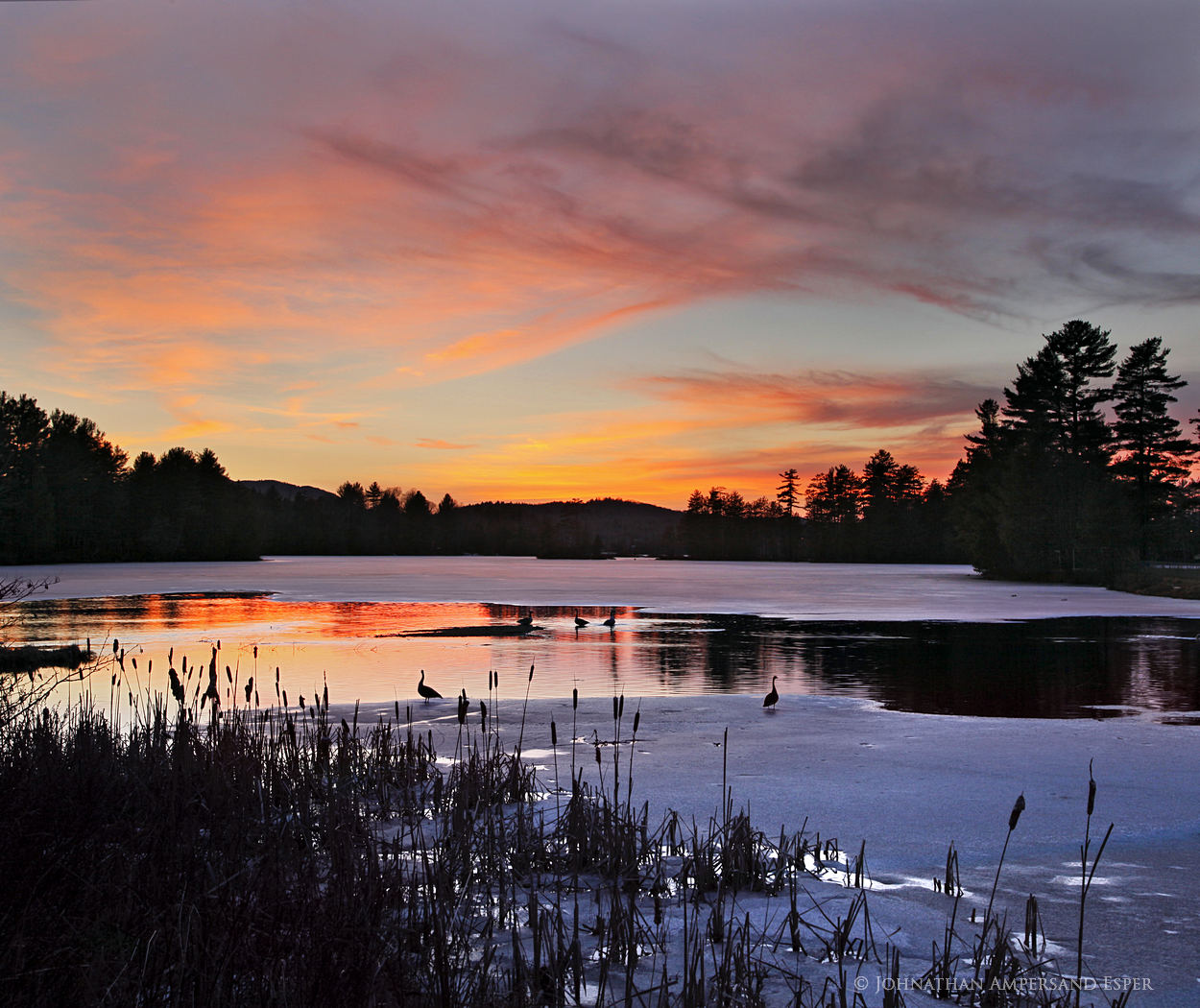 Jennings Pond,Long Lake,Park Pond,Jennings Pond Long Lake,Park Pond Lake Lake,Canada geese,geese,sillouette,spring,ice,spring ice,, photo