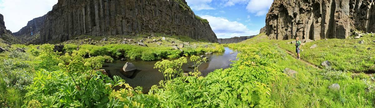 Jökulsá á Fjöllum side canyon in Jökulsárgljúfur National Park, northern Iceland