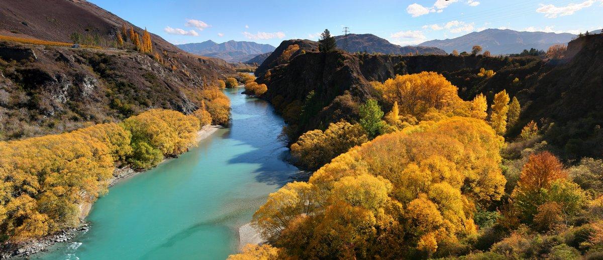 Kawarau River, Queenstown, New Zealand, Autumn, fall, willows, yellow, photo