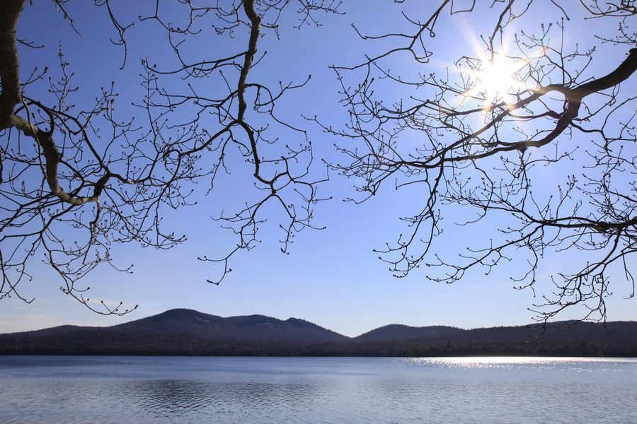 Lake Eaton,Owl's Head,Owl's Head Mt,Owls Head Mt,spring,branches,overhanging,lake,sunburst,bright,sunny,day,water,buds,s, photo