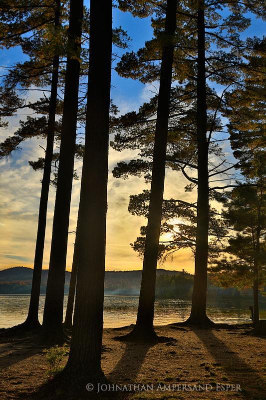 Lake Eaton, campsite,white pines,pines sillouette,tree,Lake Eaton campsite pines sillouette,Lake Eaton Campsite,beach,, photo