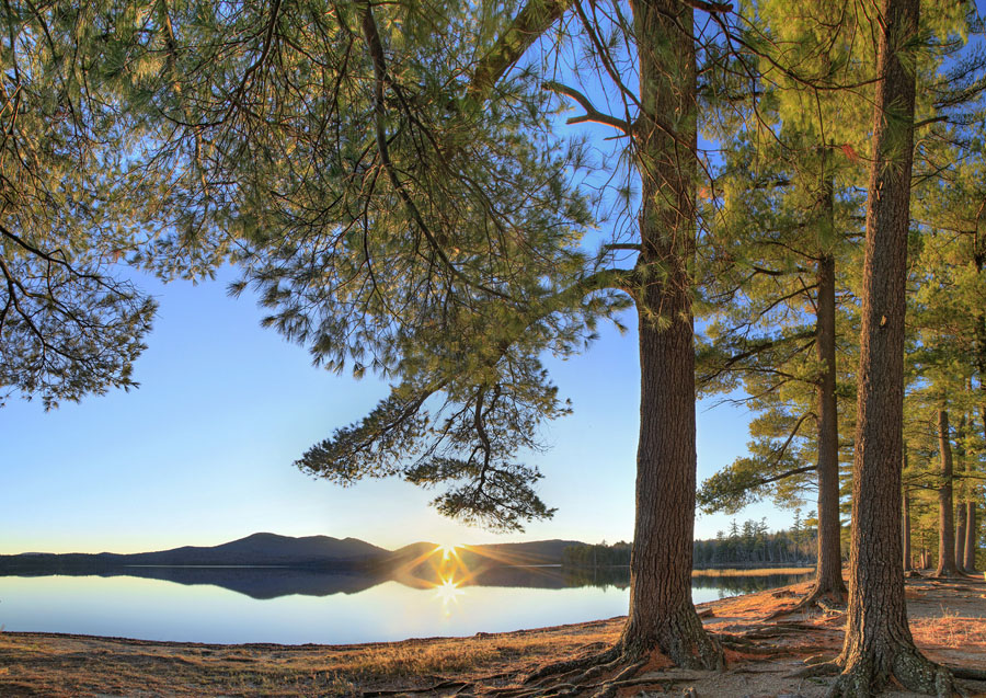 Lake Eaton,November,pines,campground,Owl's Head Mt,Owls Head Mt,reflection,white pine,, photo