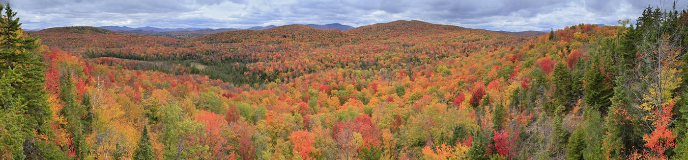 Autumn 2009 on Ledger Mt, from the top of a spruce tree, Indian Lake area, Adirondacks. Wakely and Sawyer Mt seen center