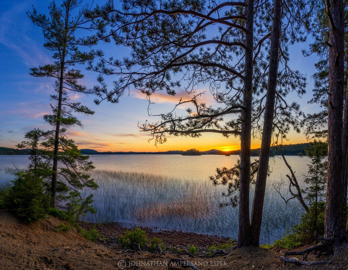 Saranac Lake,Middle Saranac Lake,Saranac Lakes,pines,sillouette,summer,2020,sunset,lake sunset,