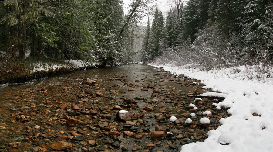 Coleville National Forest, eastern, Washington, winter, stream, rocky, snow, bank, river, photo