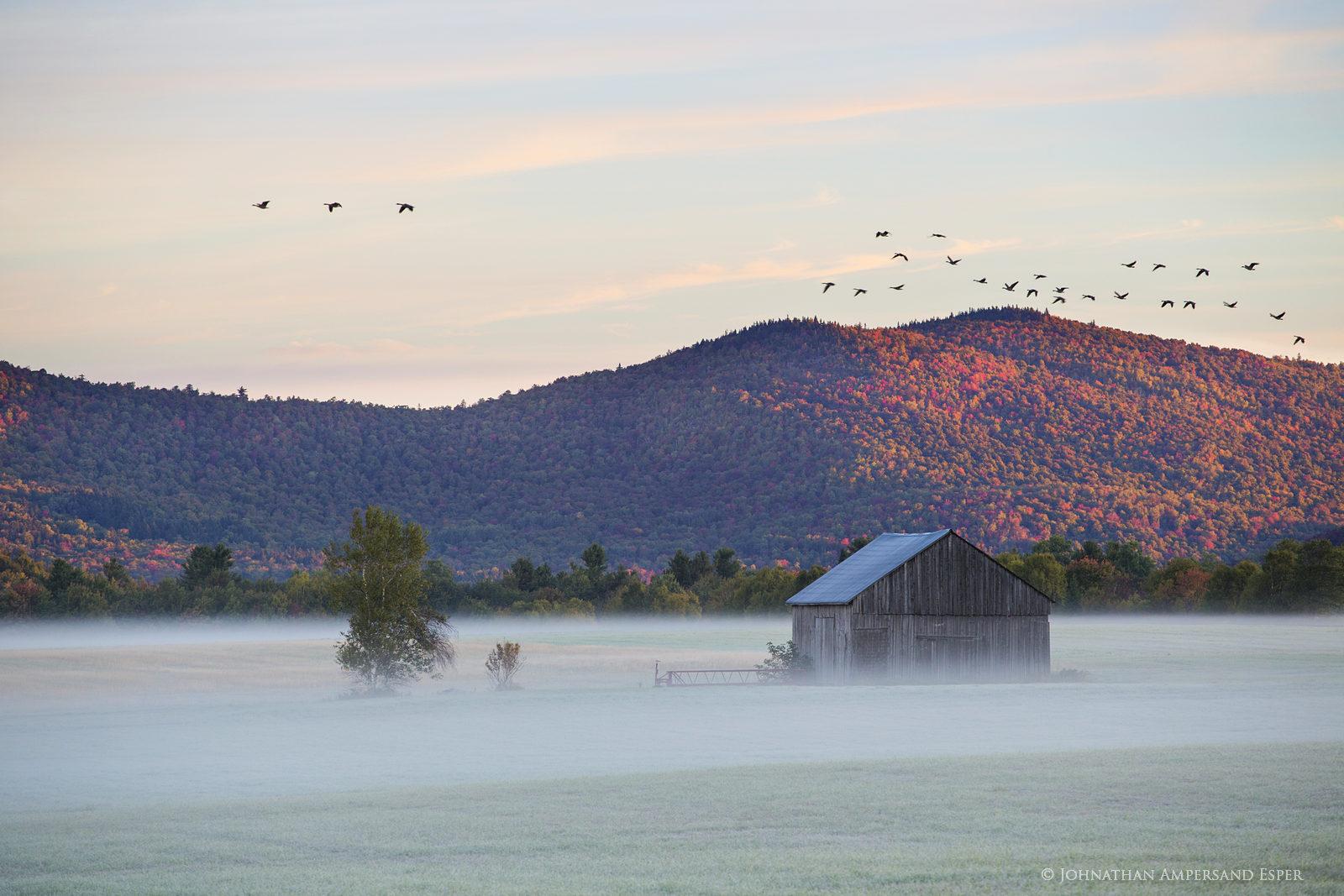Vermontville,Norman Ridge,barn,autumn,Canada geese,sunrise,frost,old barn, photo