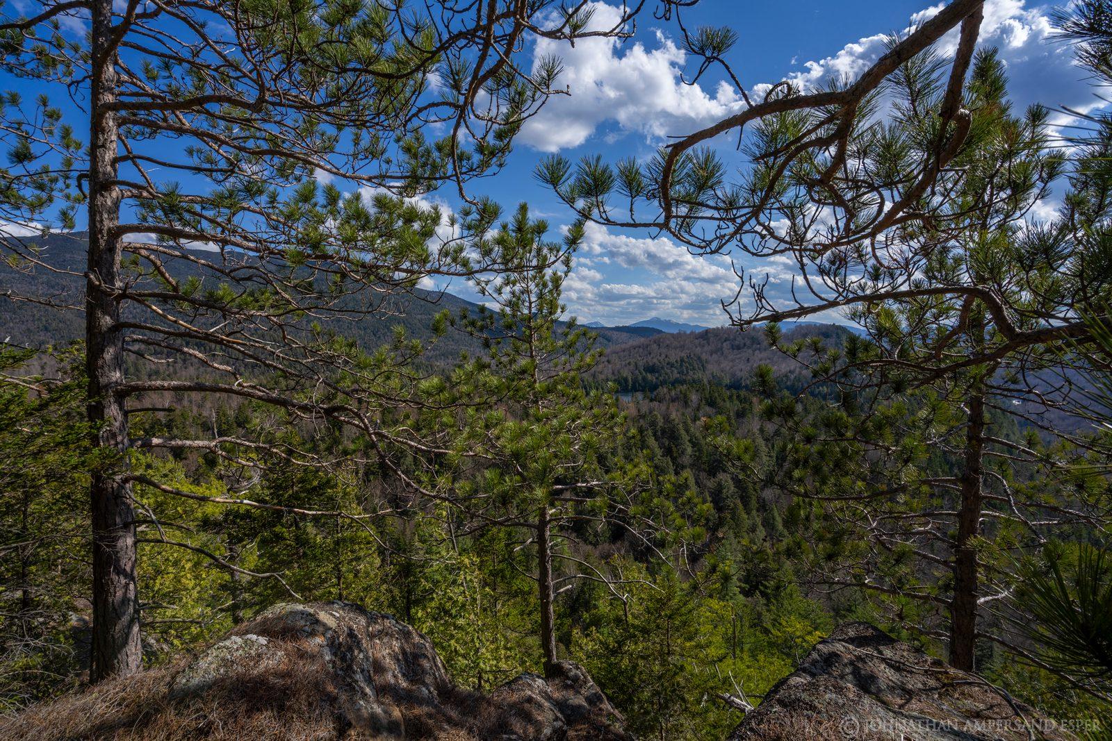 Notch Mountain,Notch Mt,Wilmington Notch,sunny,spring,day,cliffs,bushwack,pines,High Peaks