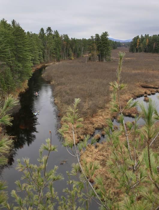 Osgood River,canoeing,canoe,trip,family,Adirondack,Adirondack Park,fall,treetop,pine,white,high-angle,aerial,view,canoei, photo