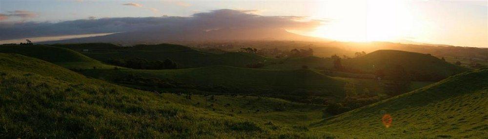 Mt. Taranaki, Taranaki region, sunset, pastures, green, photo