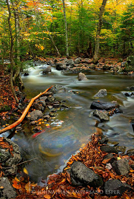 Owen Pond,outlet,stream,smooth,stick,bark,stripped,flood,fall,swirl,leaves,swirling,fall,autumn,2011,, photo