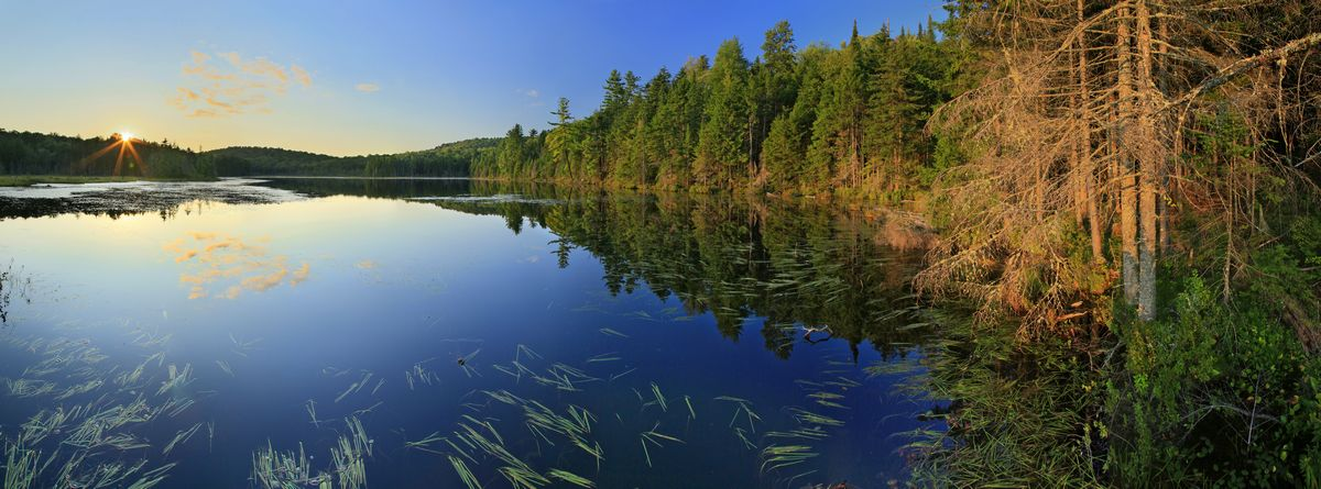 Rankin Pond,Adirondacks,Adirondack Park,bog,pond,lake,wetland,summer,sunset,panorama,sun star,Johnathan Esper, photo